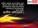 ameodia completed 2nd glorious year